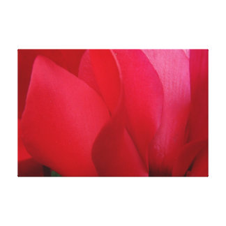 Floral Abstract Photography Canvas Print