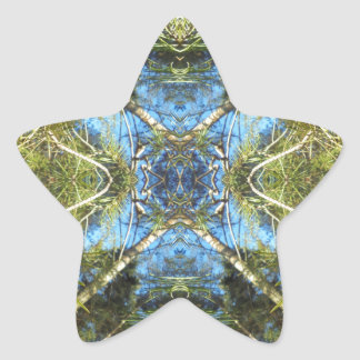 Floral abstraction star sticker