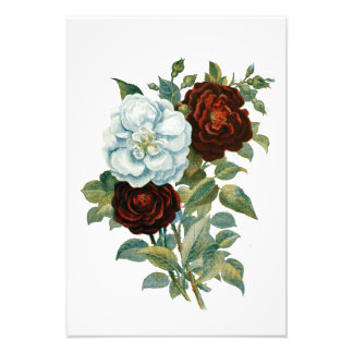 Floral and Elegant Vintage Bouquet Photo Print