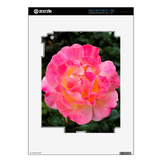 Floral Art Decal For iPad 2