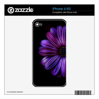 Floral, Art, Design, Beautiful, New, Fashion Decals For iPhone 4