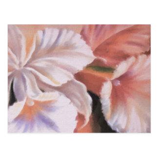 floral art studio 16316 postcard