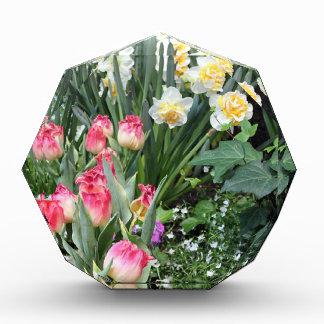 Floral Beauty Acrylic Award