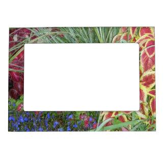Floral Beauty Magnet Photo Frame Frame Magnets