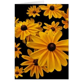 Floral Black Eyed Susan Flowers Blank Card