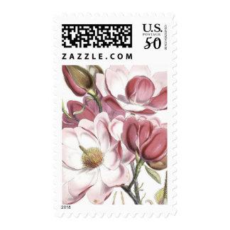 Floral Botanical Illustration Postage Stamp