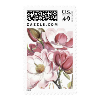 Floral Botanical Illustration Postage Stamp