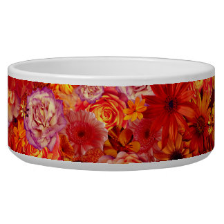 Floral Bright Rojo Bouquet Rich Red Hot Daisies Bowl