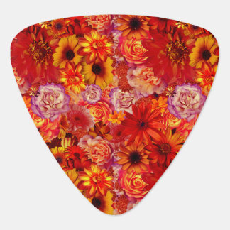 Floral Bright Rojo Bouquet Rich Red Hot Daisies Guitar Pick