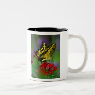 Floral Butterfly Mug
