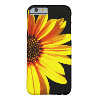 floral barely there iPhone 6 case