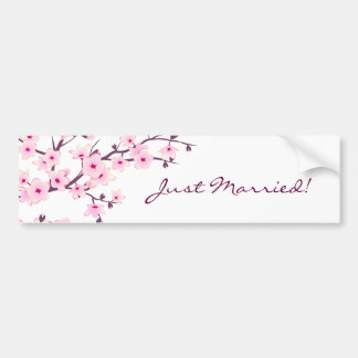 Floral Cherry Blossoms Bumper Sticker