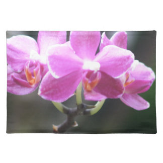 Floral collection cloth placemat