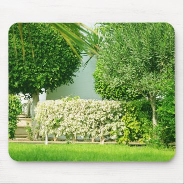 anakondasp floral collection. Cyprus Mouse Pad