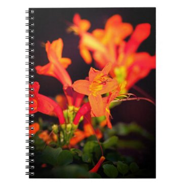 anakondasp floral collection spiral notebook