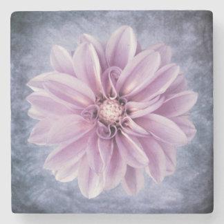 Floral colorido de la dalia del primer púrpura de posavasos de piedra