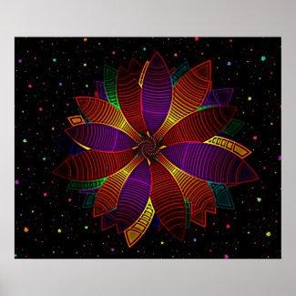 Floral cosmos print