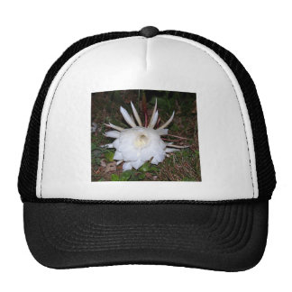 floral creations trucker hat