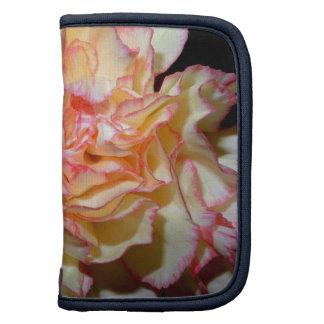Floral delicado del clavel dulce organizadores