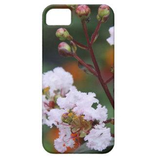 Floral, Delicate Pink Crepe Myrtle Bloom & Buds iPhone 5 Case