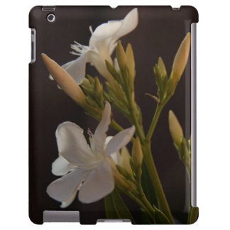 Floral Delicate White Blooms on Black Background