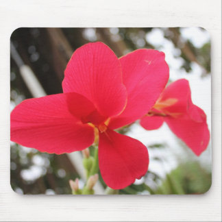 Floral Design Mouse Pads