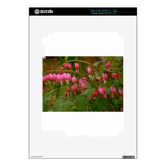 Floral Display Skins For The iPad 2