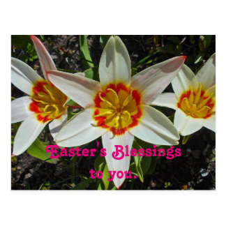 Floral Easter Blessings Postcard