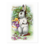 Floral Easter Bunny Postcard Post Card