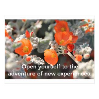 Floral Experiences Postcard