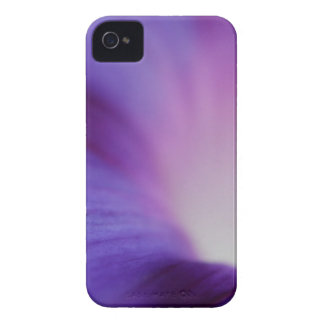 Floral Falls iPhone 4 Case