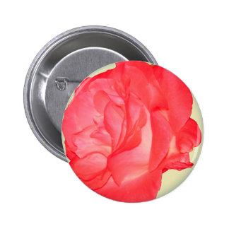 Floral fresco enrrollado - color de rosa rosado pins