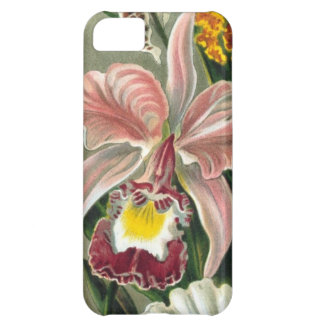 Floral Gardens iPhone 5C Cover