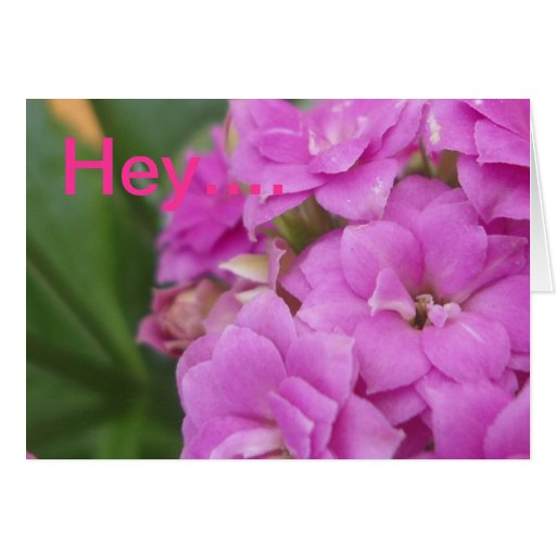 Floral Get-Well Greeting Card
