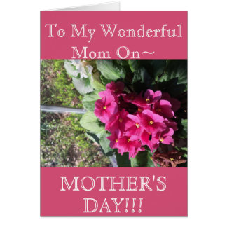 Floral Gifts & Cards