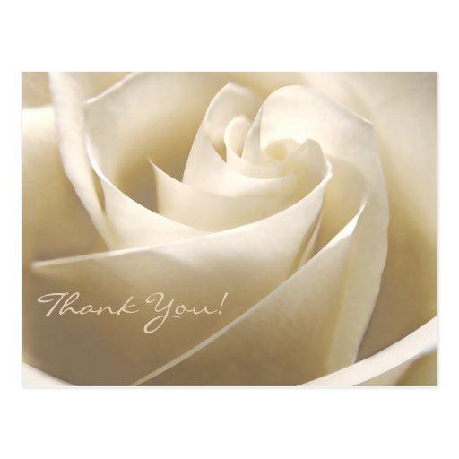 Floral gracias las postales