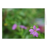 Floral green background small purple flower stationery note card