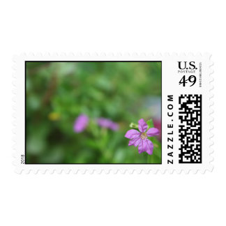 Floral green background small purple flower postage stamps