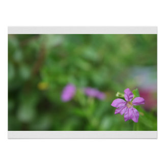 Floral green background small purple flower poster