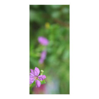 Floral green background small purple flower rack card