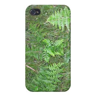 Floral green fern in grass iPhone 4 case