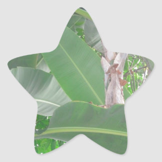 Floral: Green Leaves with Red Flower Star Sticker