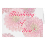 Floral Greeting Card-Pink Zinnia Flowers