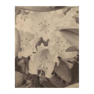 Floral gris cuadro de madera