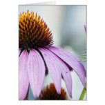 Floral Harmony Greeting Cards