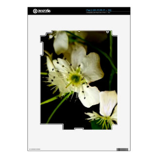 Floral Image Decal For iPad 2