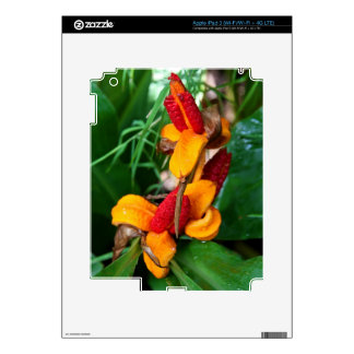 Floral iPad 3 (Wi-Fi/Wi-Fi + 4G LTE) Skin iPad 3 Decal