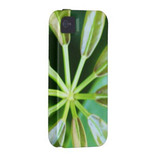 floral iPhone 4 case