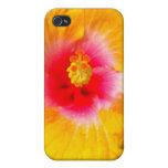 Floral iPhone 4 Coberturas