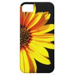 floral iPhone 5 carcasa